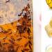 3 Bahan Dari Dapur Ini Mampu Hapuskan Lipas Dengan Berkesan, Memang Kena Cuba